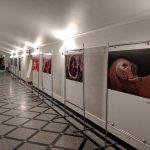 University of Warsaw Photo Exhibition5